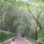 주말 인천 여행