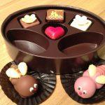 스위스 초콜렛 레더라