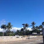 하와이에서의 첫날